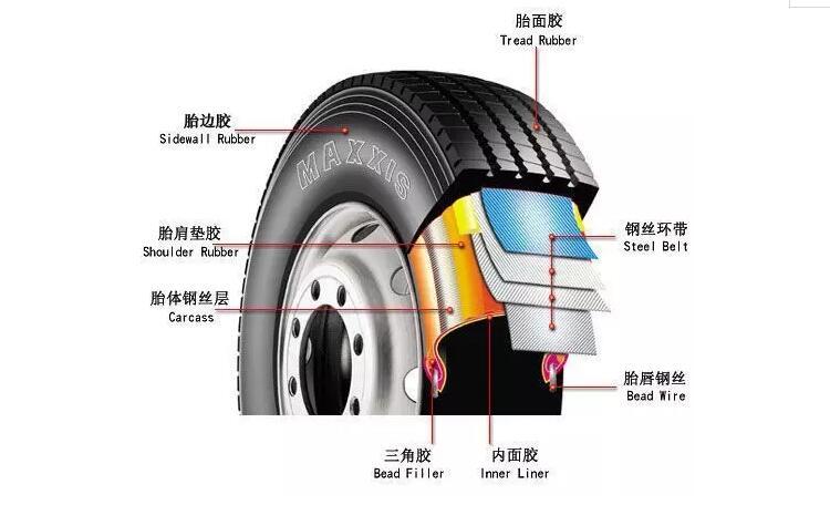 轮胎的剖面图